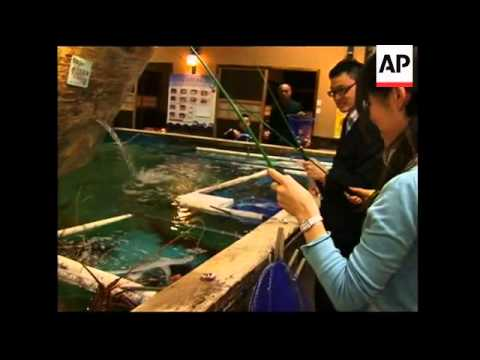 Indoor fishing takes off in tokyo youtube for Indoor fishing