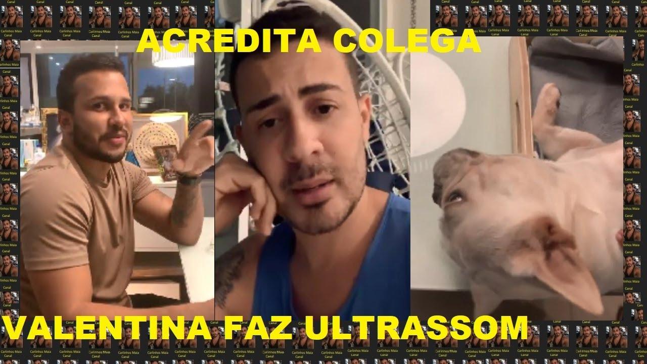 Carlinhos Maia Valentina Faz Ultrassom Carlinhos Diz Acredita Colega