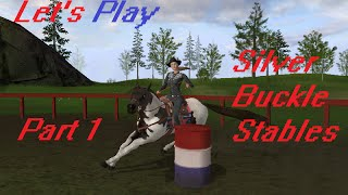 Silver Buckle Stables Let