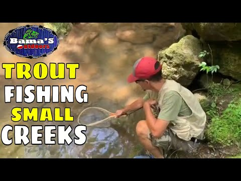 TIPS AND TECHNIQUES FOR TROUT FISHING SMALL CREEKS|NORTH GEORGIA MOUNTAIN TROUT FISHING
