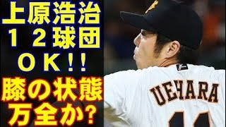 プロ野球巨人を自由契約になった上原浩治が、手術を行った膝の状態を明...