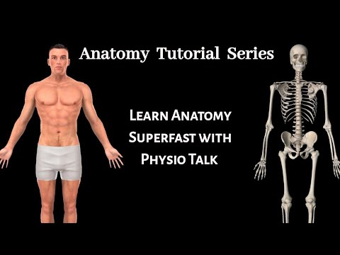 anatomy-tutorial-series-introduction