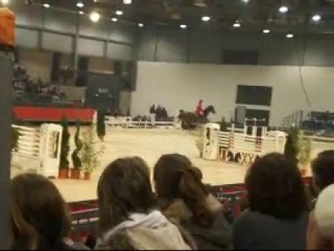 Puissance 6 barres salon du cheval de montpellier 2008 youtube - Salon du cheval montpellier ...