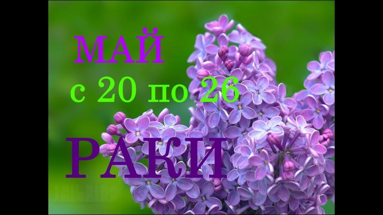 РАКИ. ГОРОСКОП на НЕДЕЛЮ с 20 по 26 МАЯ 2019 год.