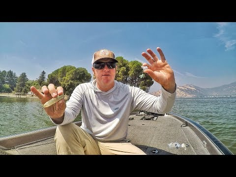 Fall Bass Fishing Tricks You Didn't Even Know To Try!