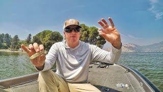 Fall Bass Fishing Tricks You Didn