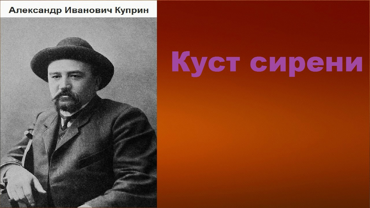 Александр Иванович Куприн.  Куст сирени. аудиокнига.