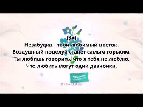 Тима Белорусских - Незабудка + текст