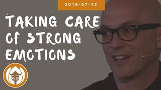 Taking Care of Strong Emotions | Dharma Talk by Br Phap Lai, 2018 07 12