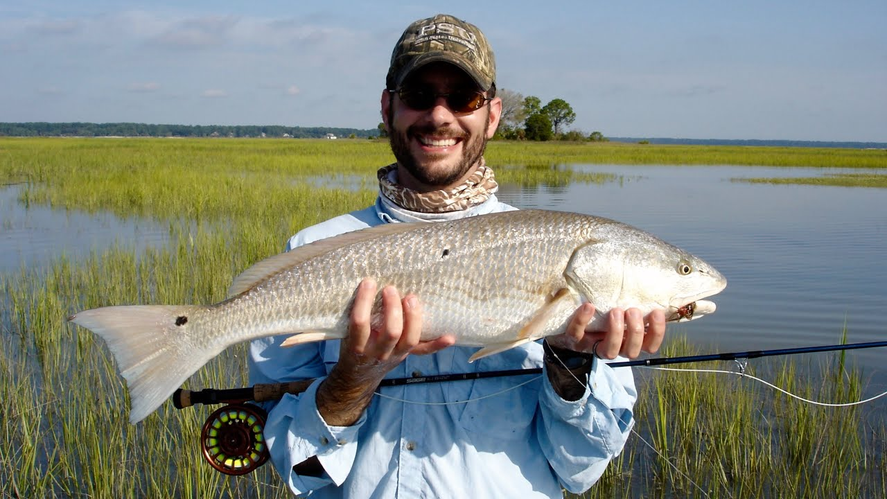 Fly fishing for redfish off the hook charters hilton for Right hook fishing charters