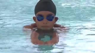 Hướng dẫn kiểu Bơi Ếch dành cho người mới tập Bơi