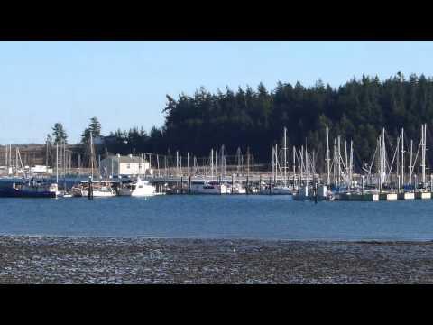 Oak Harbor Marina.mpg