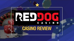 Red Dog Casino Review | 🔎 Is Red Dog Casino Legit?