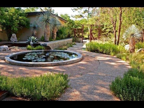 Goodbye Lawn: Hello to Wildlife & Serene Courtyard Living | Central Texas Gardener