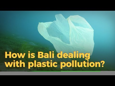 Live: How is Bali dealing with plastic pollution? 巴厘岛如何应对塑料污染?