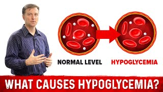 What Causes Hypoglycemia?