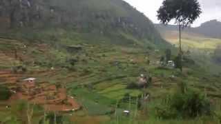 Sri Lanka mountains bus ride. Beautiful view of the tea plantations.
