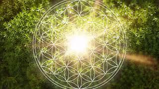 528 Hz Heart Chakra Regeneration | Repair & Heal The Heart Chakra | Open & Balance ANAHATA Chakra