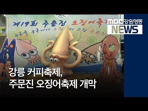 [뉴스리포트]강릉커피축제,주문진오징어축제 개막 181005