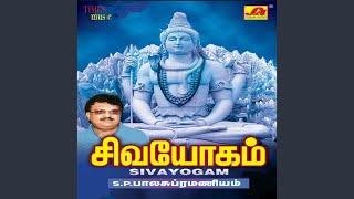 Om Sivaaya Namaha Siva