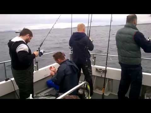 🎣 FISHING TOUR.ATLANTIC.KILLYBEGS.IRELAND Рыбалка в атлантике.