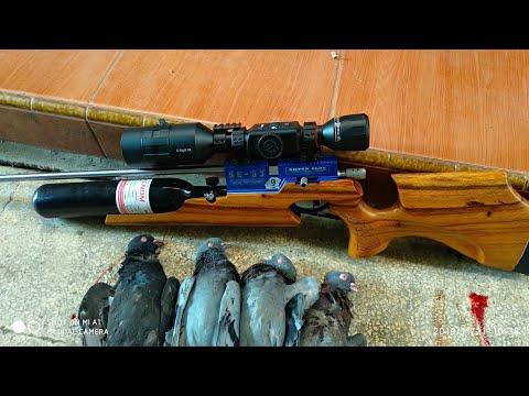 UJI COBA SE-03 NT NO 9 HEAD SHOT BURUNG MERPATI DI JARAK 29 YARD & 44 YARD by GUN SHOP SNIPER ELITE