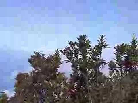 Cerro El Avila - Vista desde Lagunazo hacia la Guaira