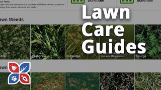 Do My Own Lawn Care - Lawn Care Guides