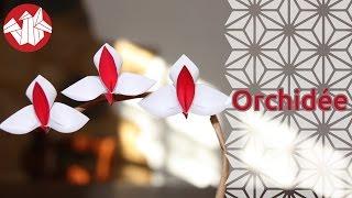 Origami - Orchidée - Orchid [Senbazuru]