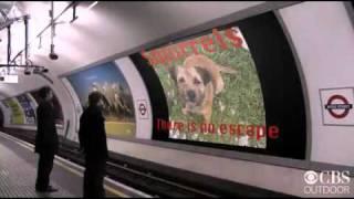 Marley Tube Advert