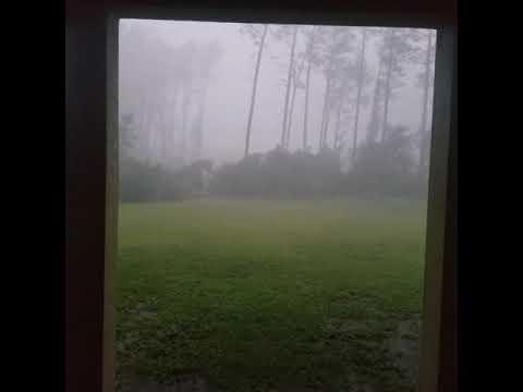 Irma In Fernandina