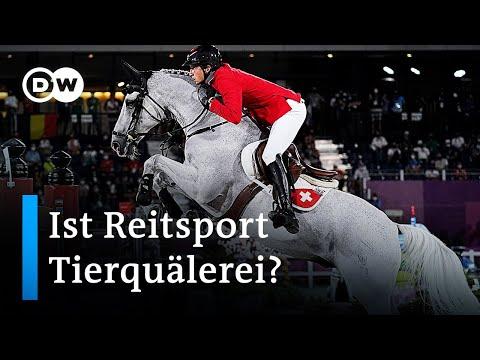 Nach Tod von Olympia-Pferd: PETA vs. Deutsche Reiterliche Vereinigung | DW Nachrichten