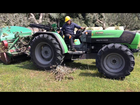 Olive pruning collection with Facma technology in Calimera, Italy – 28 March 2017