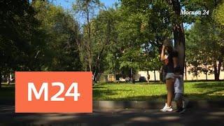 """""""Специальный репортаж"""": жена футболиста - Москва 24"""