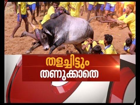 Jallikattu festival raw fumes in Tamil Nadu | Asianet news hour 22 Jan 2017