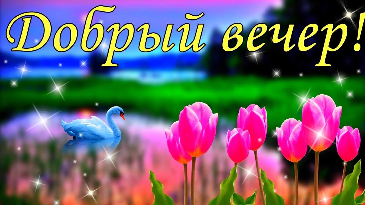 Доброго вечера! Пожелание с добрым вечером!