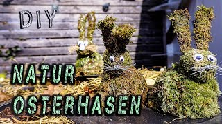 DIY Ostern 2019 |  🥕Niedliche Natur Osterhasen🐇