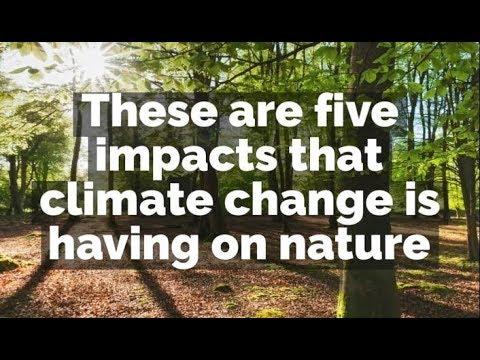 Big Climate Conversation: