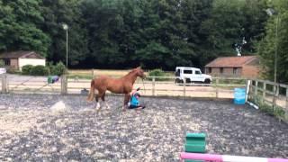 Bareback jumping (inc fall)