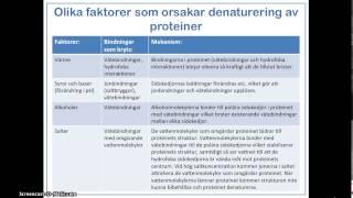 denaturering av proteiner