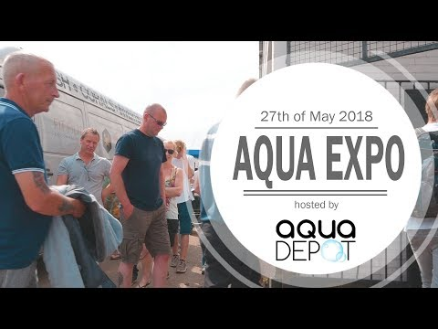 Aqua Expo 2018 Aarons Aquarium Montage