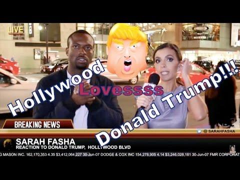 Hollywood Loves Donald Trump