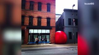 Video shows giant RedBall rolling down Toledo street