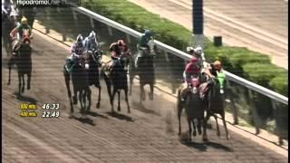 Vidéo de la course PMU PREMIO MARRAINE