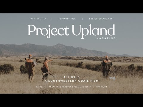 Hunting Mearns, Scaled, And Gambel's Quail In Arizona - All Wild - A Project Upland Original Film