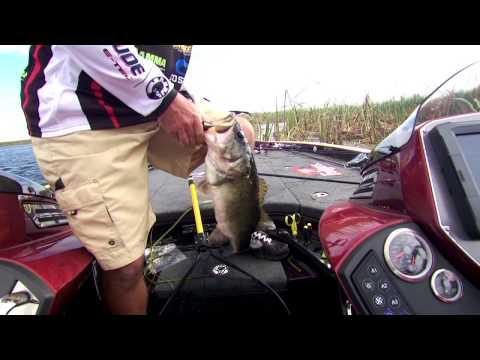 'FLW' uncut: 2014 Lake Okeechobee