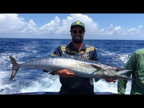 FISHING BRAZIL - Part 1 - Wahoo, Tuna And Barracuda On Fernando De Noronha Island.