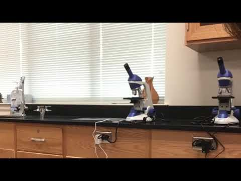 lab-safety-and-equipment-fl1