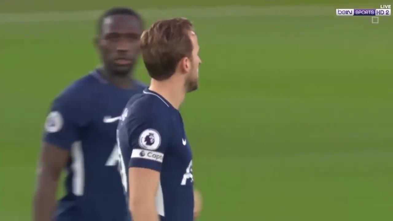 Download Southampton vs Tottenham Hotspur 1-1 Highlights & All Goals EPL 21-01-2018