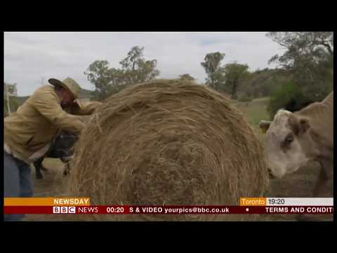 Extreme weather 2018 - Farmers struggling (Australia) - BBC News - 24th July 2018